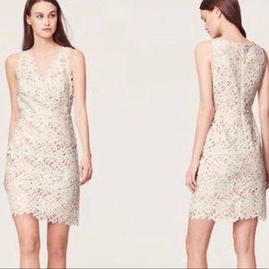 Loft   White Floral Lace Sheath Dress